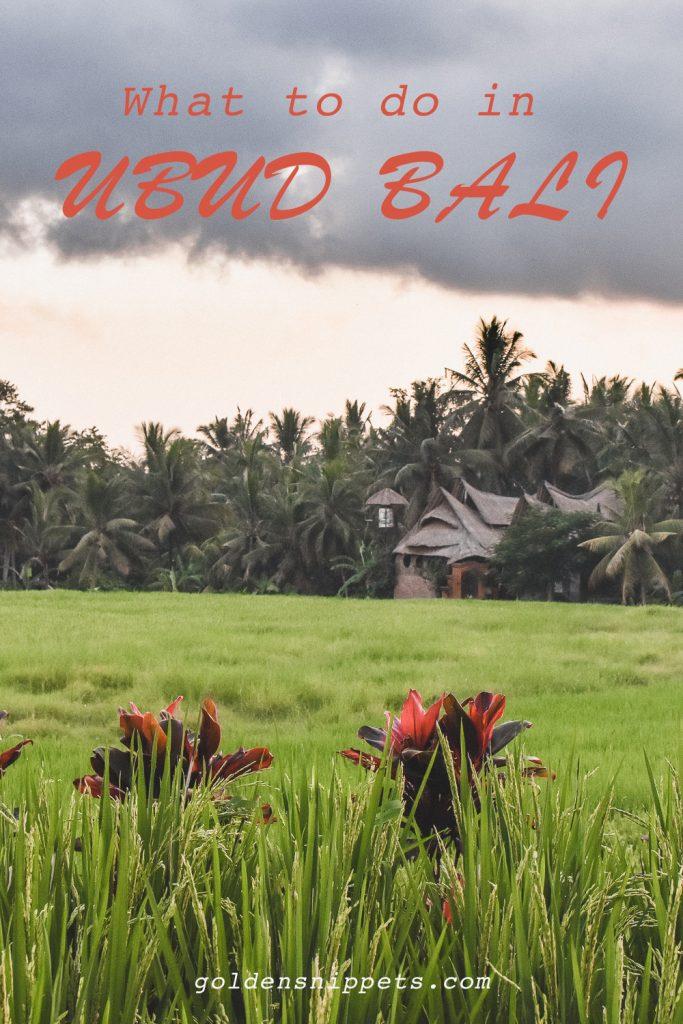 Travel Guide Bali Ubud