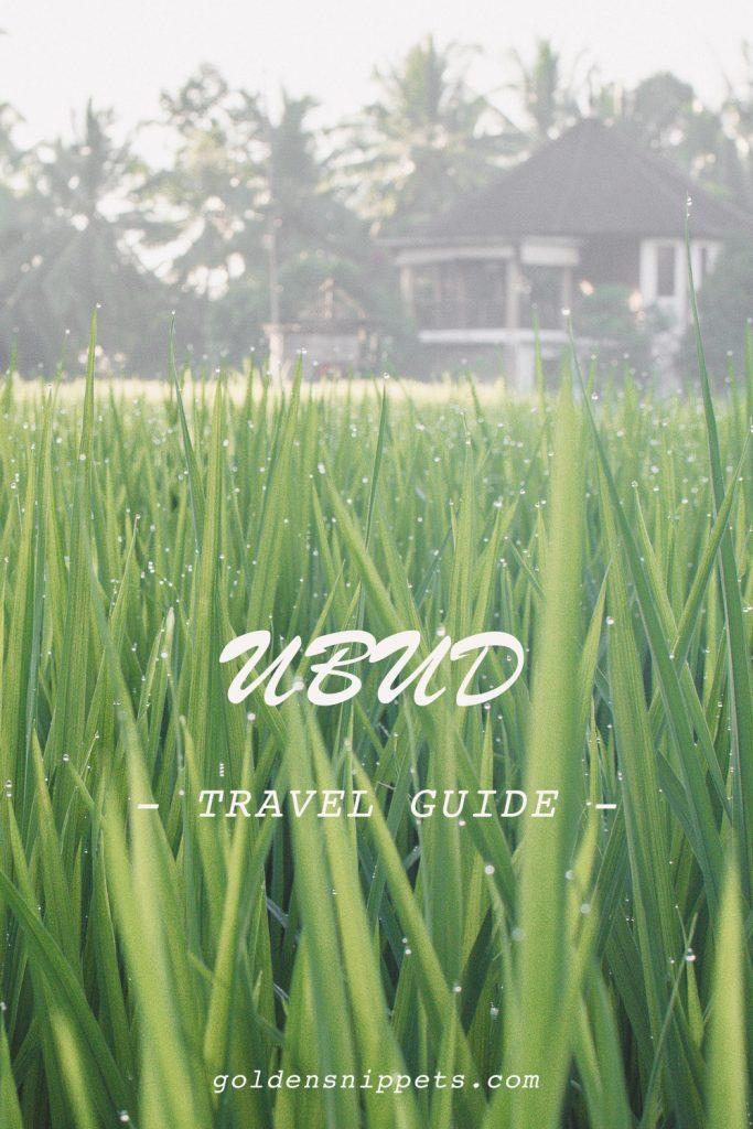 Travel Guide Ubud Bali